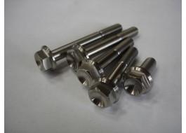 Titanium Bolt M8 X 35