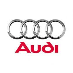 Audi (23)