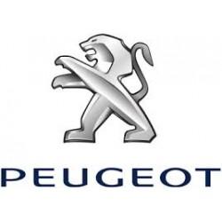 Peugeot (11)