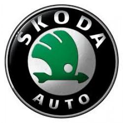 Skoda (1)